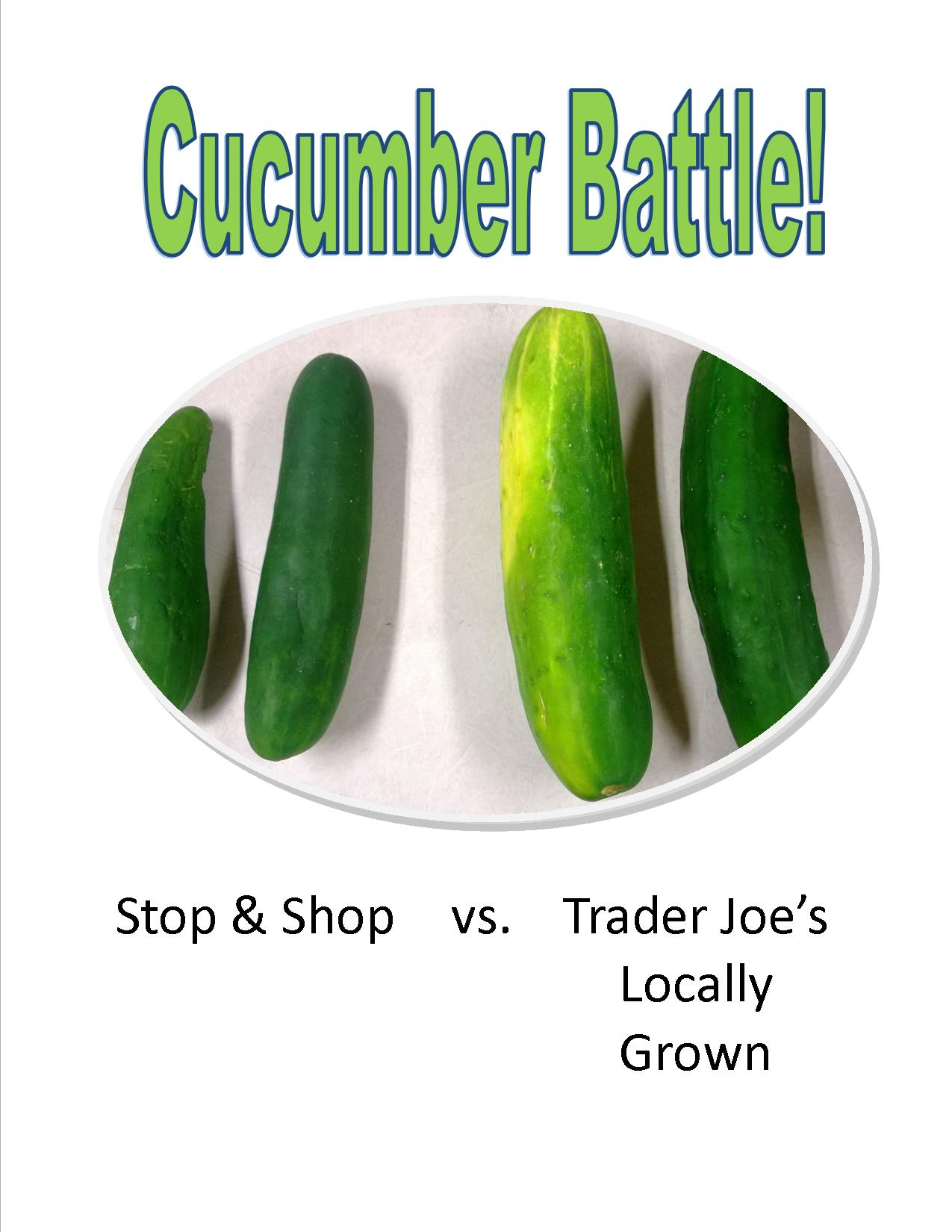 Cucumber Battle